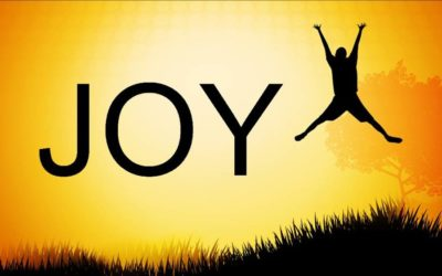 Does Your Life Bring Joy?